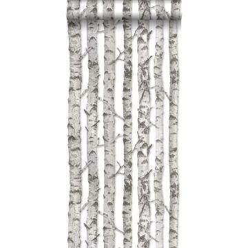 wallpaper birch trunks light warm gray from ESTA home