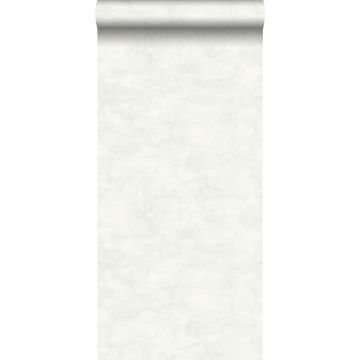 wallpaper concrete look light warm gray and matt white from ESTA home