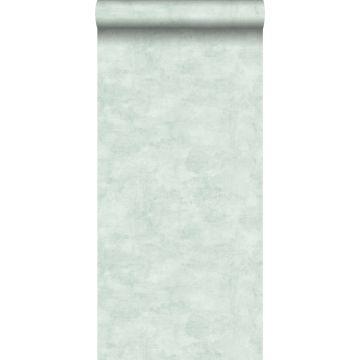 wallpaper concrete look light pastel mint green from ESTA home