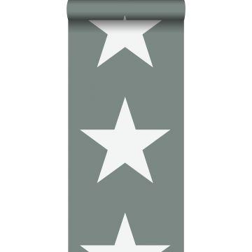 wallpaper stars grayish green from ESTA home