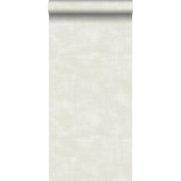 wallpaper concrete look light beige from ESTA home