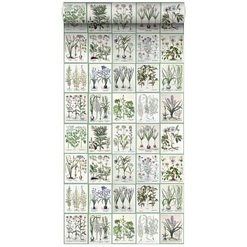 non-woven wallpaper XXL pages of a botanical book light warm gray and green from ESTA home