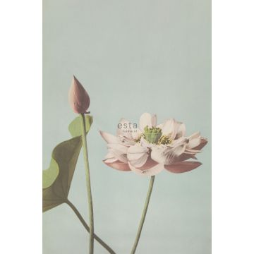 wall mural lotus flower antique pink from ESTA home