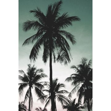 wall mural palm trees petrol green from ESTA home