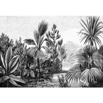 wall mural tropical landscape black and white from ESTA home