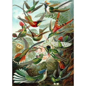 wall mural birds tropical jungle green from ESTA home