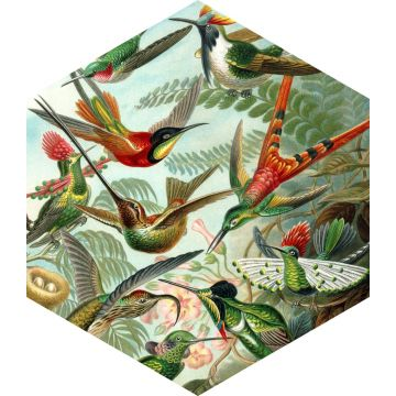 wall sticker birds tropical jungle green from ESTA home