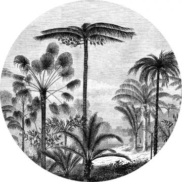 self-adhesive round wall mural tropical landscape with palm trees black and white from ESTA home