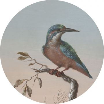 self-adhesive round wall mural kingfisher on branch evening red from ESTA home