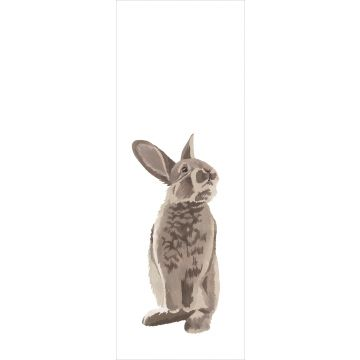 wall mural rabbit brown from ESTA home