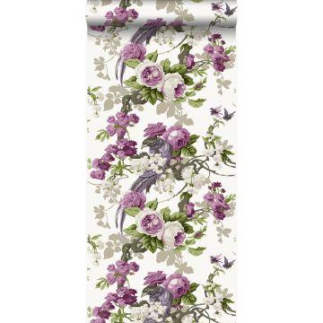 wallpaper birds of paradise purple from Origin