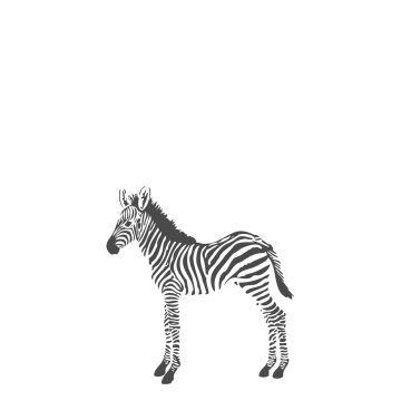 wall mural zebras black and white from Origin
