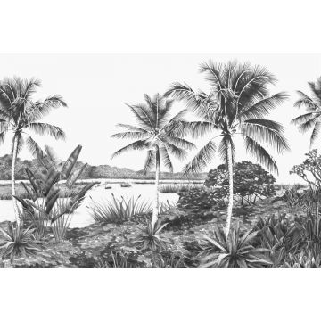 wall mural landscape with palms black and white from Origin