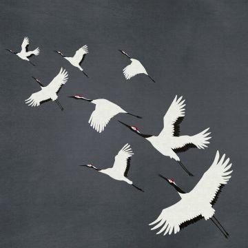 wall mural crane birds dark gray from Origin